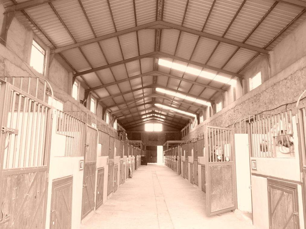 Pupilaje de caballos en Cerceda