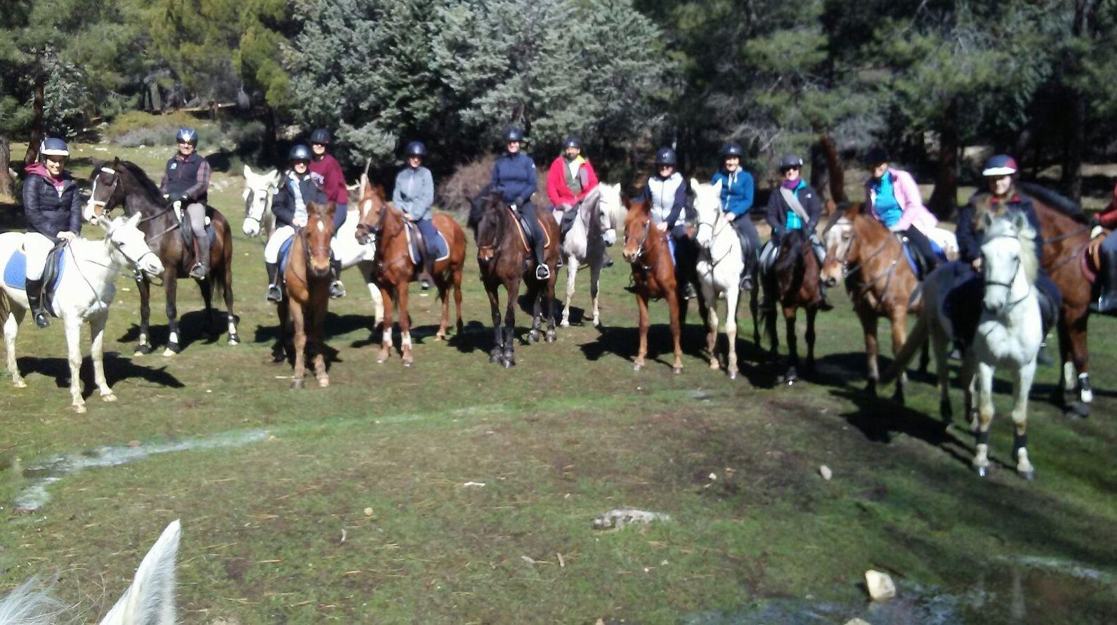 Paseos a caballo en Madrid