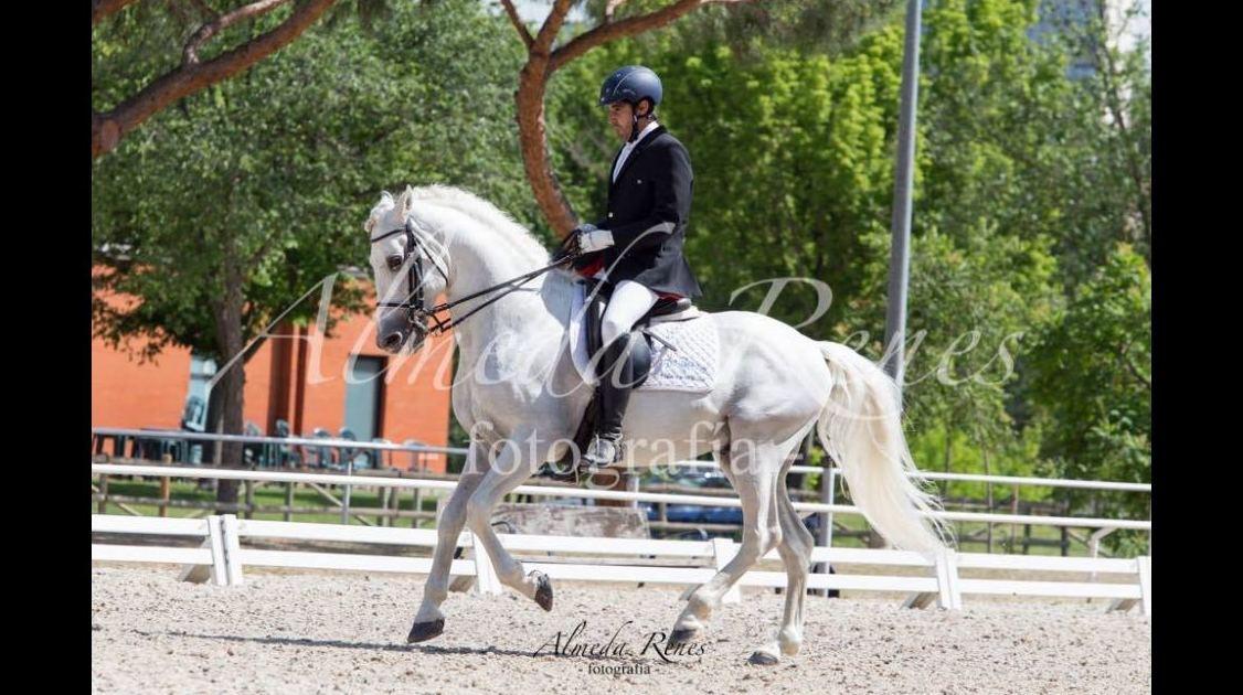 Foto 12 de Club hípico con servicio de pupilaje y veterinario en cerceda | Las Nieves Club Hípico
