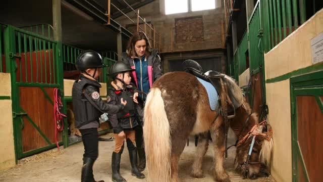 Escuela de equitación : Actividades de Las Nieves Club Hípico }}