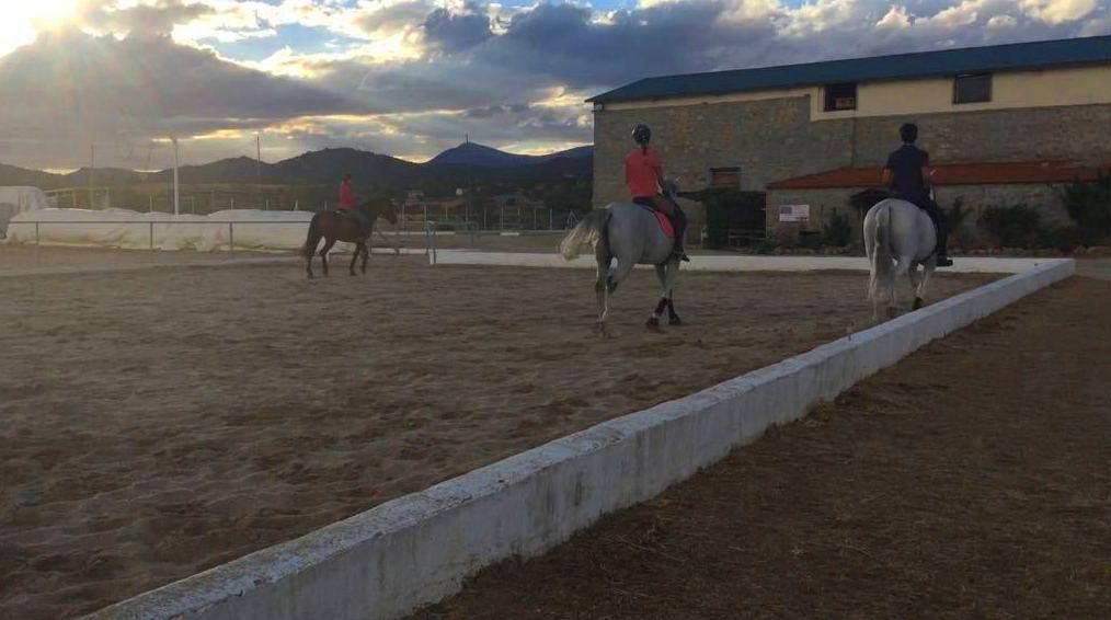 Foto 38 de Club hípico con servicio de pupilaje y veterinario en cerceda | Las Nieves Club Hípico
