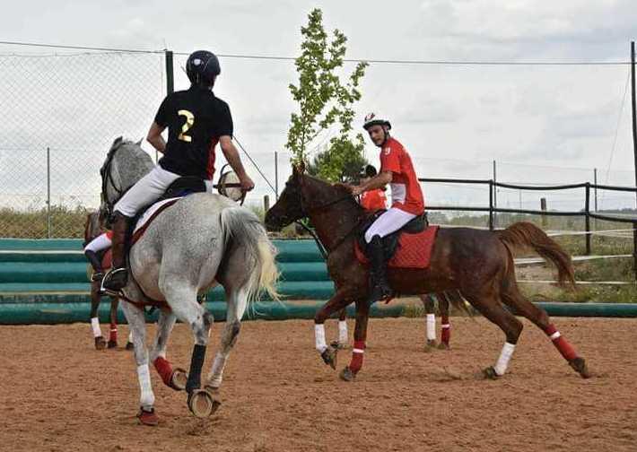 Foto 2 de Club hípico con servicio de pupilaje y veterinario en cerceda   Las Nieves Club Hípico