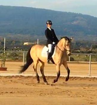 Foto 11 de Club hípico con servicio de pupilaje y veterinario en cerceda | Las Nieves Club Hípico