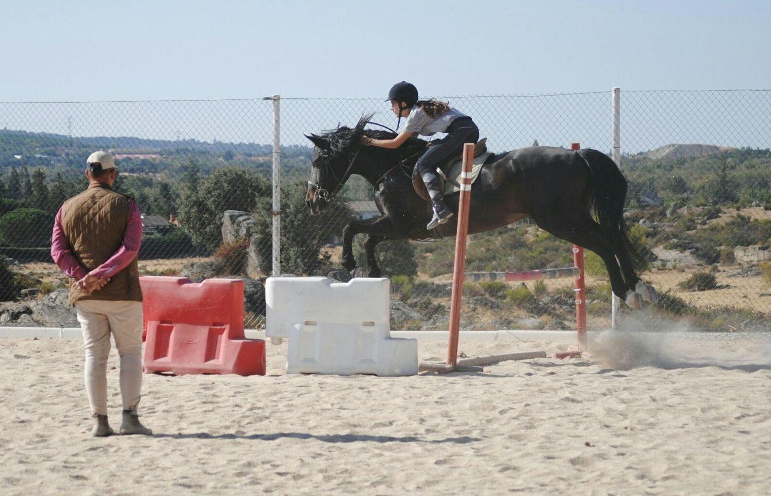 Foto 46 de Club hípico con servicio de pupilaje y veterinario en cerceda | Las Nieves Club Hípico