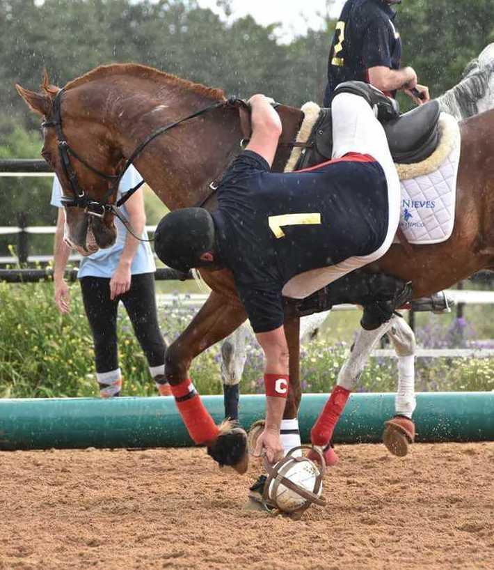 Foto 1 de Club hípico con servicio de pupilaje y veterinario en cerceda | Las Nieves Club Hípico