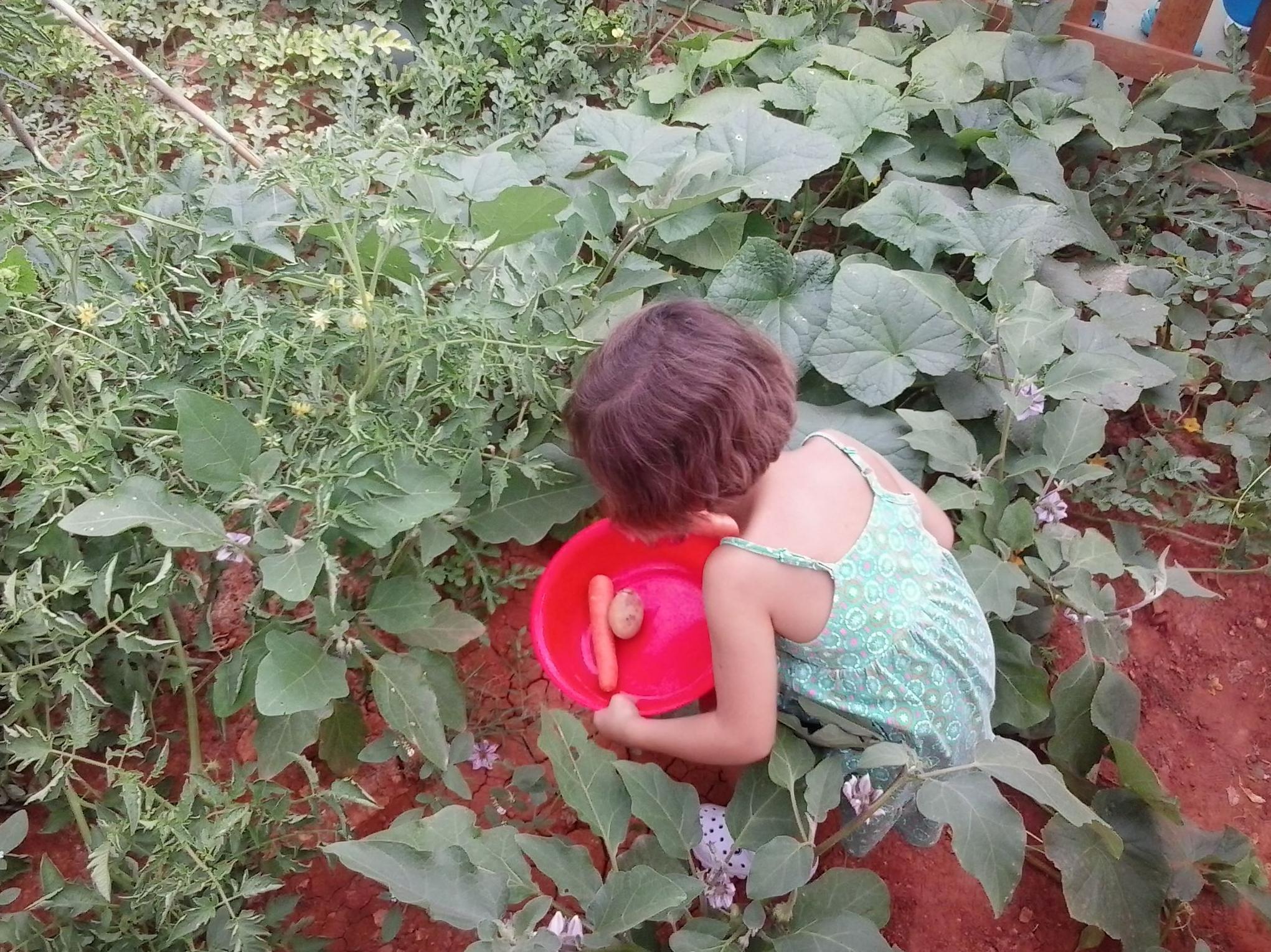 Foto 5 de Guarderías y Escuelas infantiles en  | Escuela infantil Los Siete Enanitos