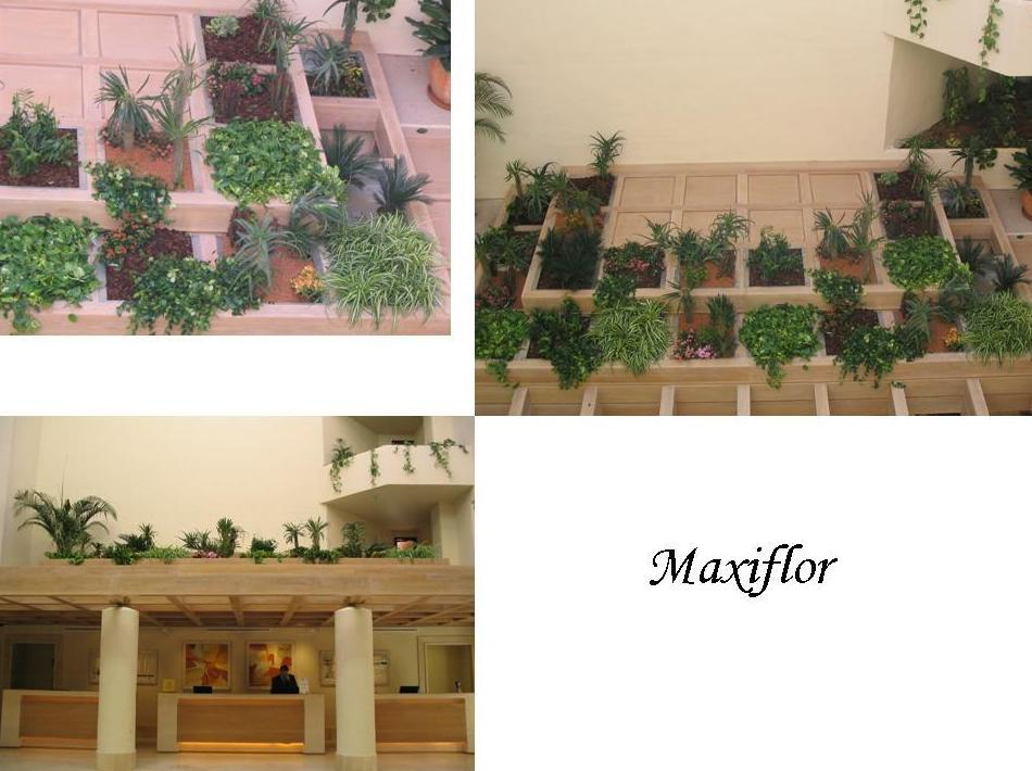 Parques: Catálogo  de Floristería Maxiflor