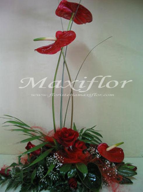 Flores rojas en Tenerife