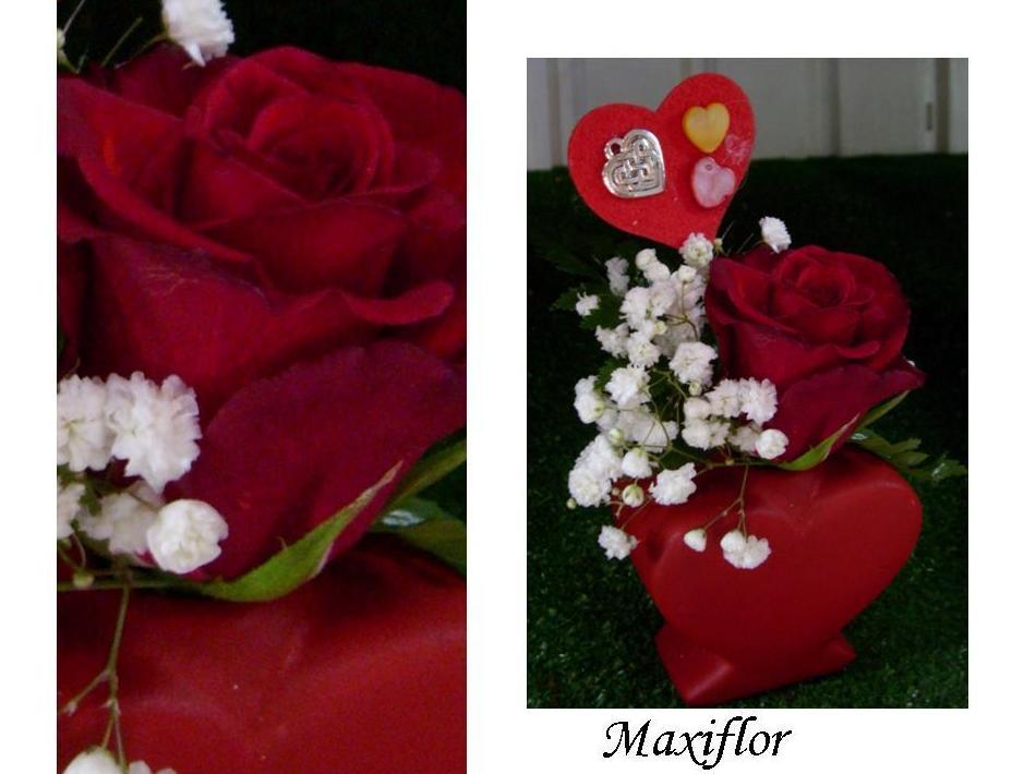 Mini corazon con una rosa roja