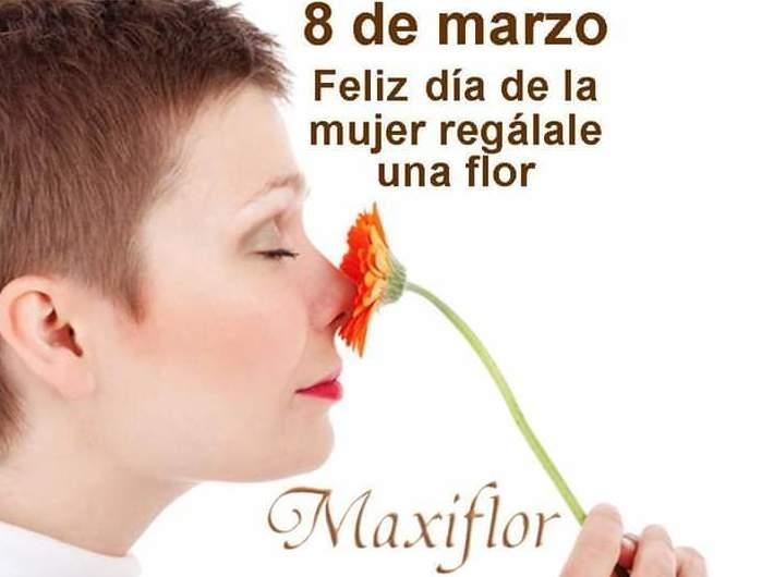 Foto 1 de Floristerías en La Estacion Tacoronte | Floristería Maxiflor