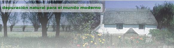 Fosas Sépticas: Servicios  de Fontanería Marco Más, S. L.