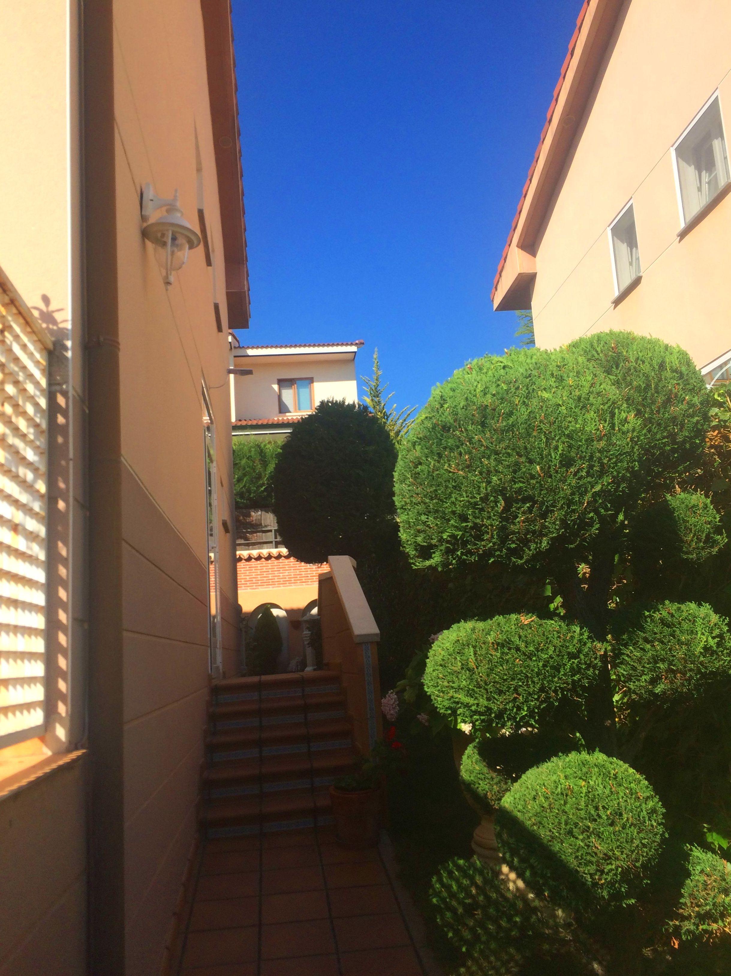 Foto 17 de Diseño y mantenimiento de jardines en Ávila | Jardinería FG