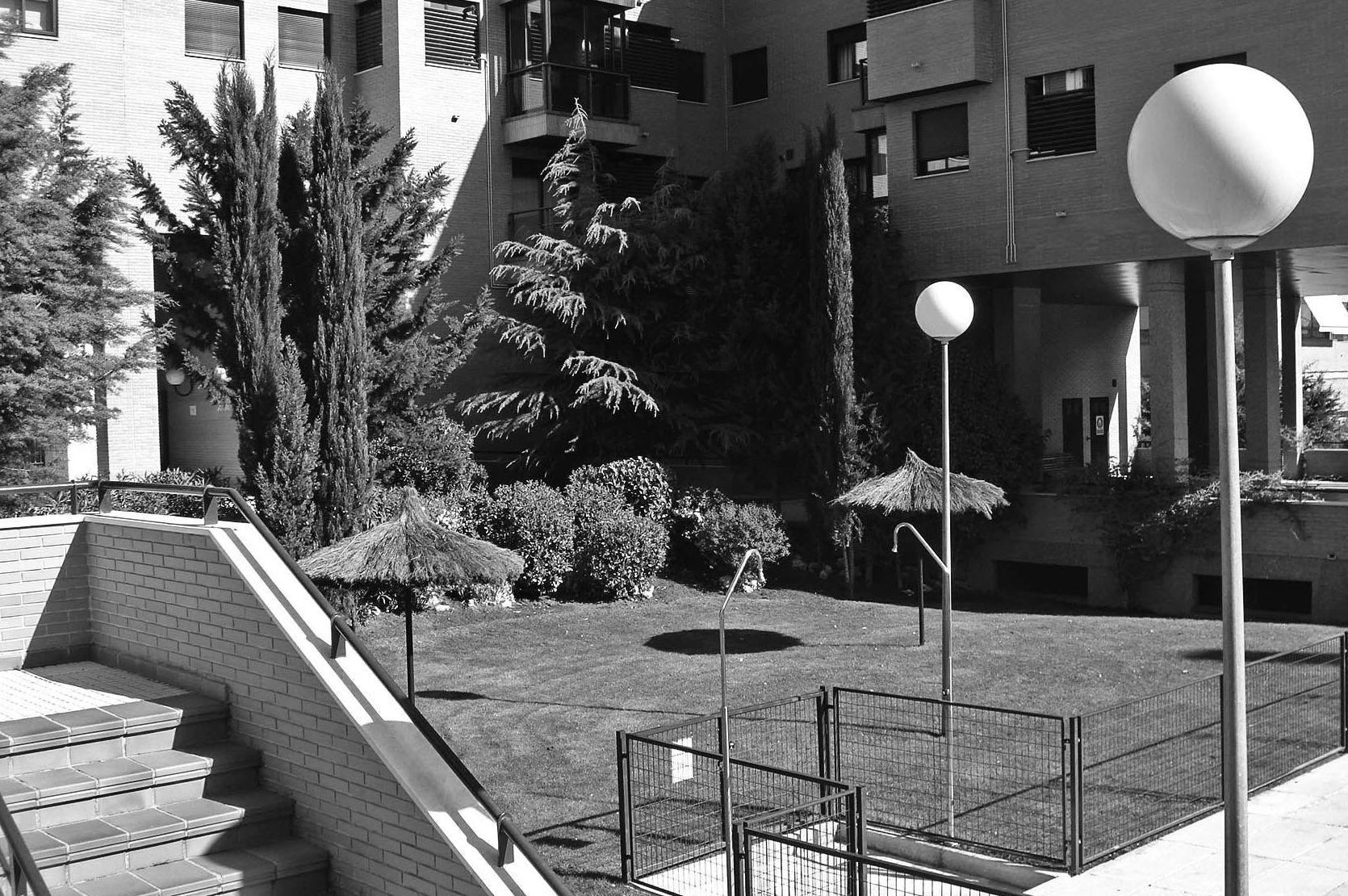 Podas y riegos de jardines en Ávila