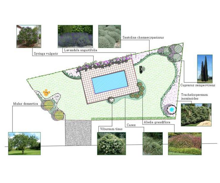 Paisajismo y diseño de jardines en Madrid