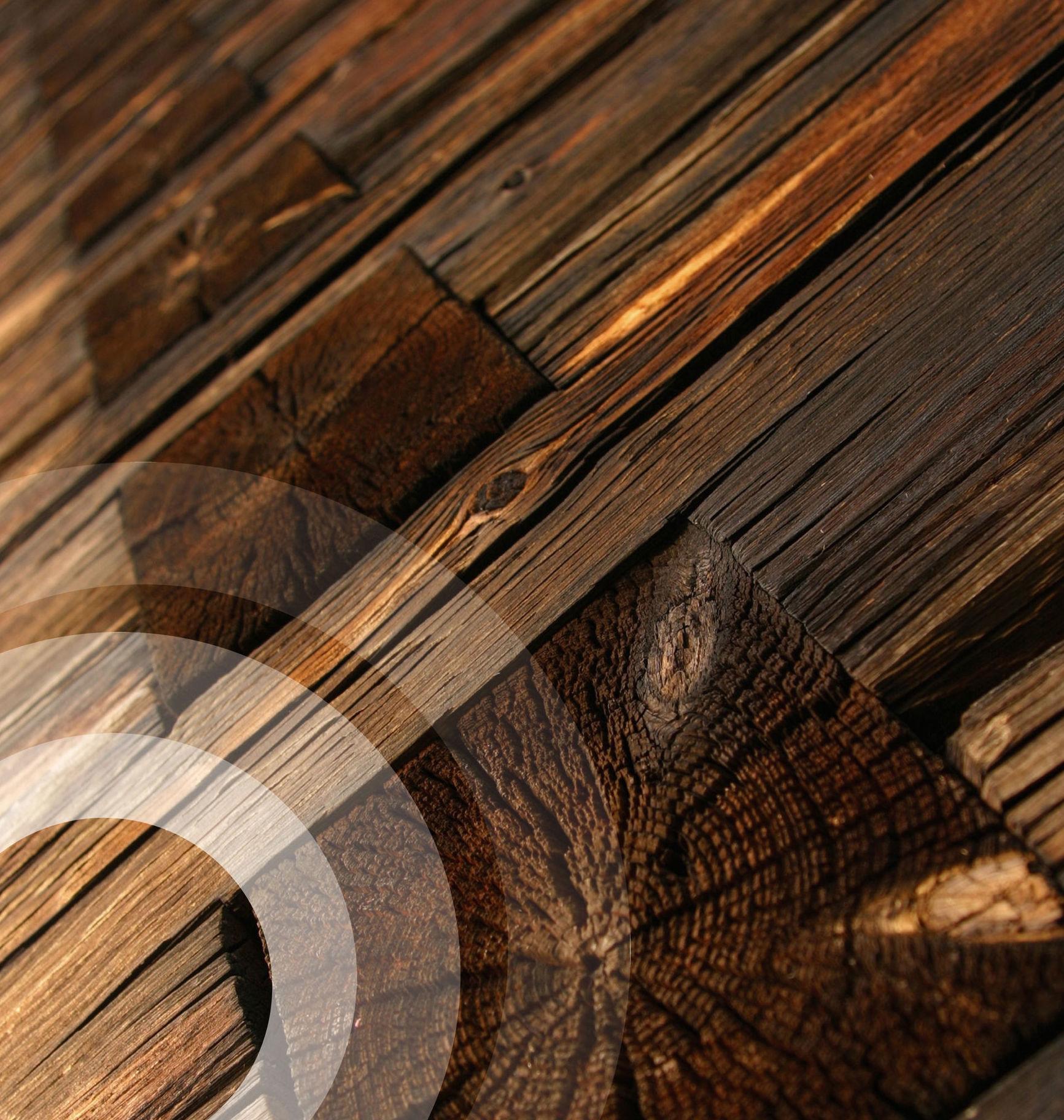 Foto 12 de Análisis y diagnosis de patologías en estructuras de madera en Cassà de la Selva | Helpest 21