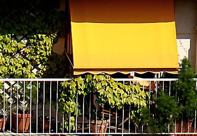 Toldos baratos en el barrio del pilar madrid variedad de - Cubrir terraza barato ...