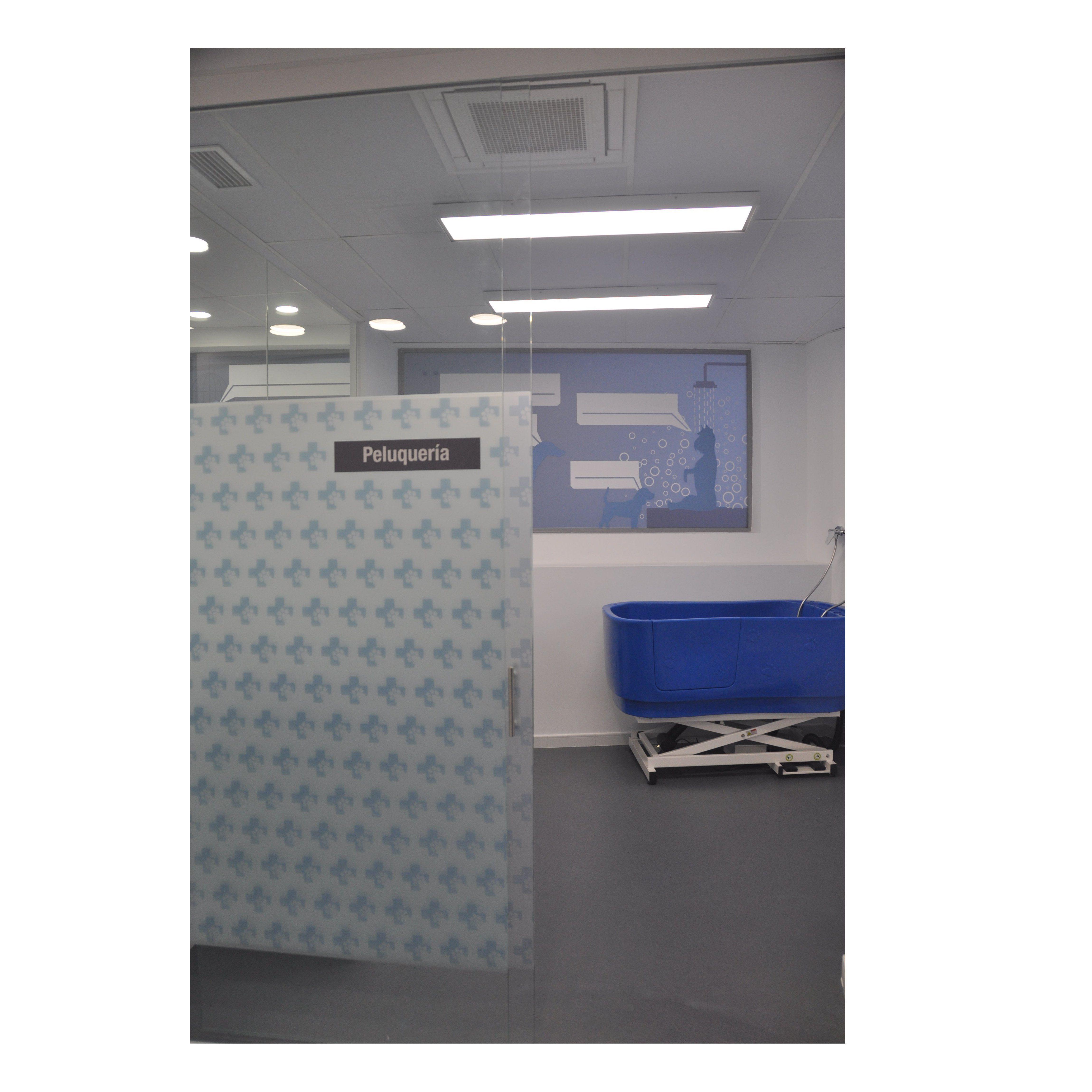 Foto 44 de Veterinarios en Alcobendas | La Chopera Hospital Veterinario
