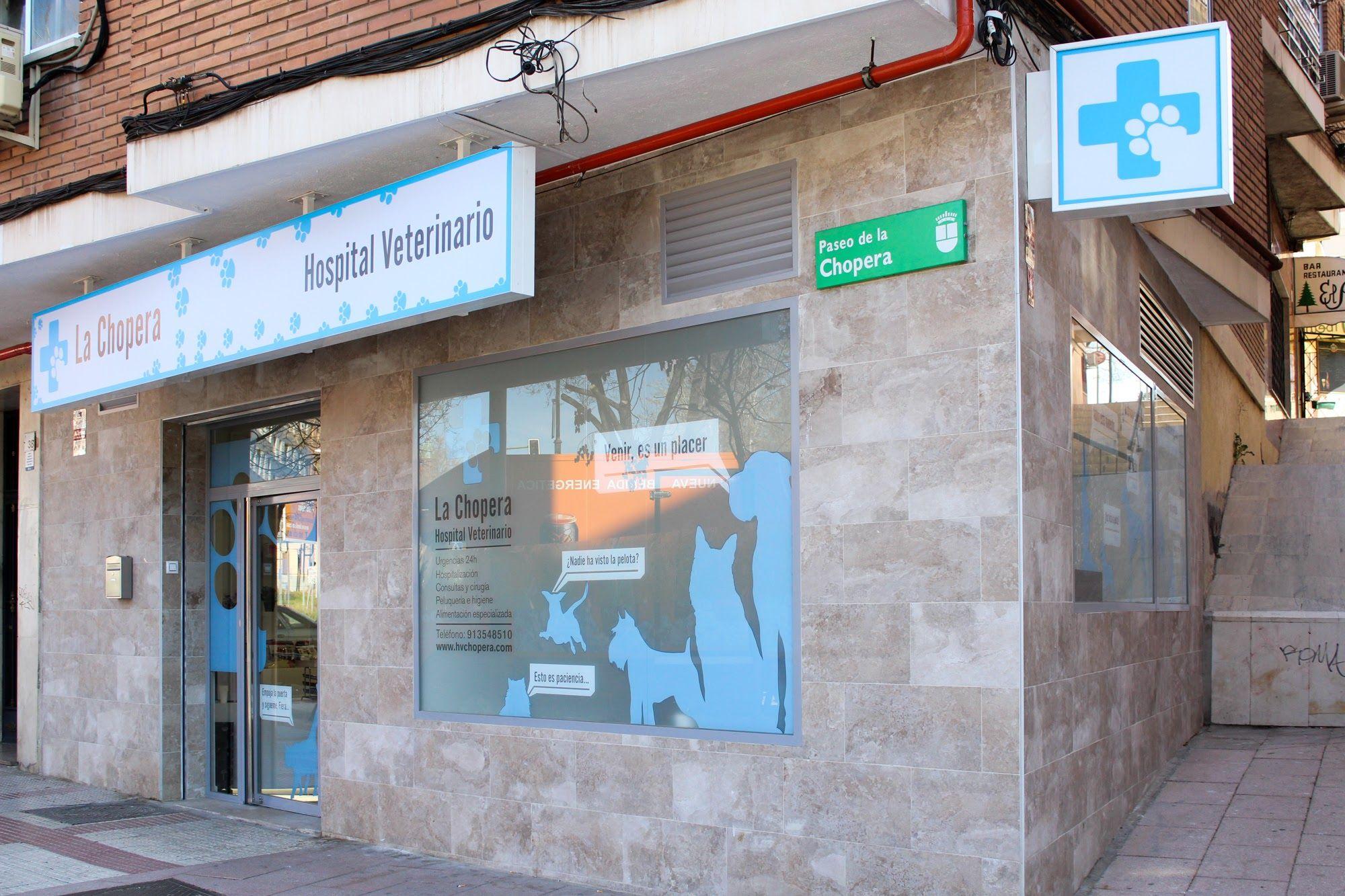 Foto 1 de Veterinarios en Alcobendas | La Chopera Hospital Veterinario
