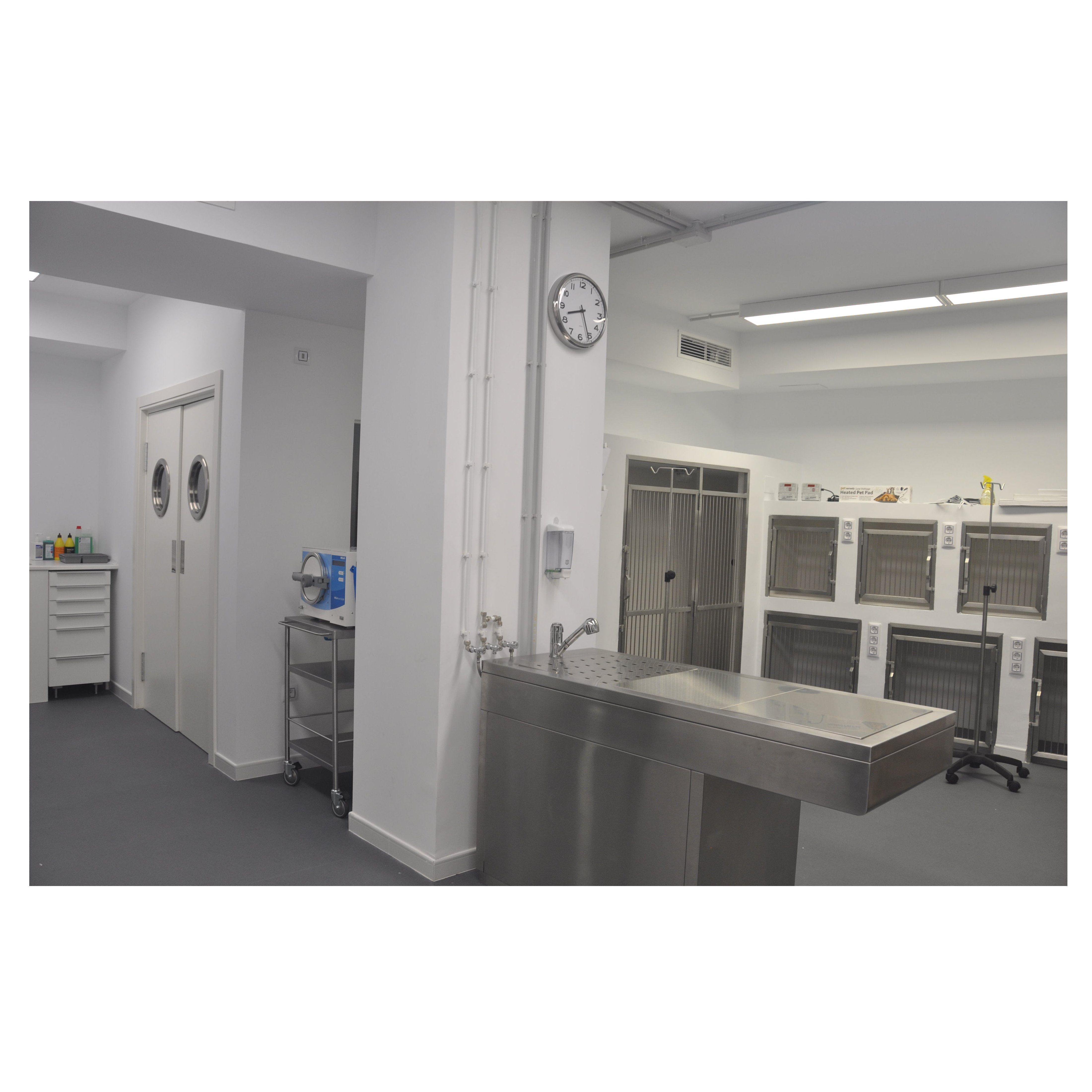 Foto 45 de Veterinarios en Alcobendas | La Chopera Hospital Veterinario