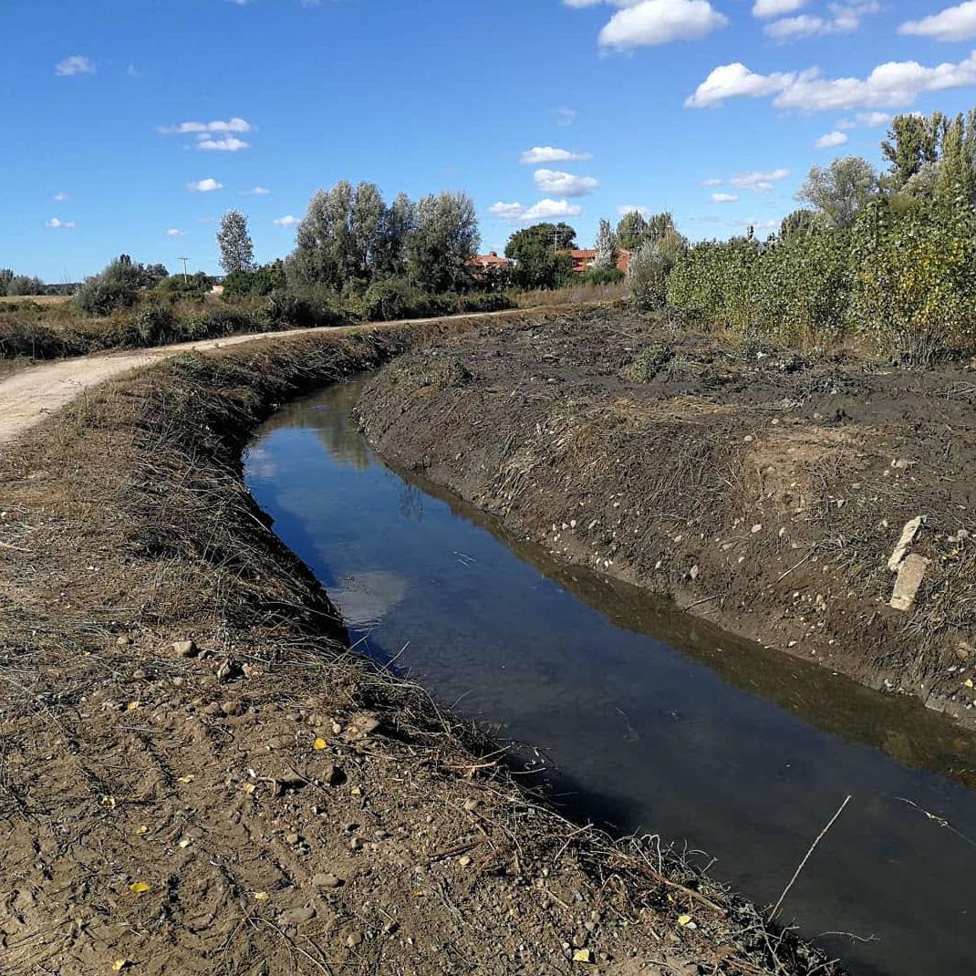 Limpieza de canales y acequias en León