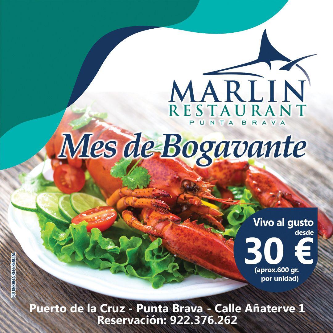 Restaurante con bogavantes vivos en Tenerife
