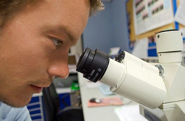 Laboratorio de análisis de plantas