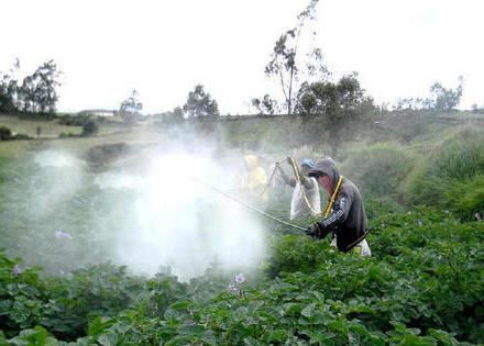 Distribución de productos fungicidas