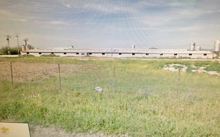 Venta de granja de cerdos: Inmuebles de Inmobiliaria Minerva