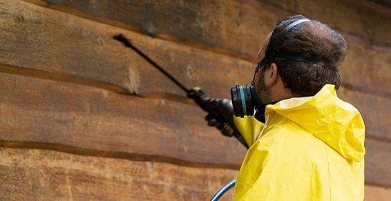 Limpieza socio-sanitaria: Servicios de Nacelim servicios y mantenimientos