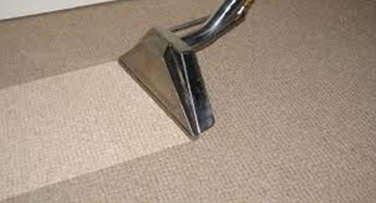 limpieza de moquetas