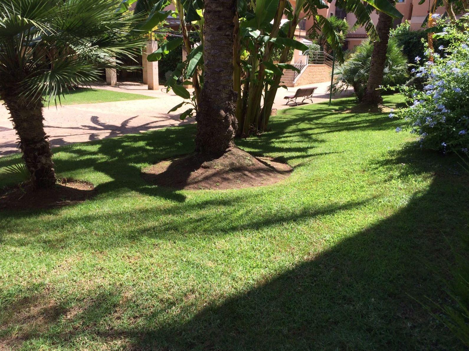 Mantenimiento de jardines llucmajor for Mantenimiento de jardines