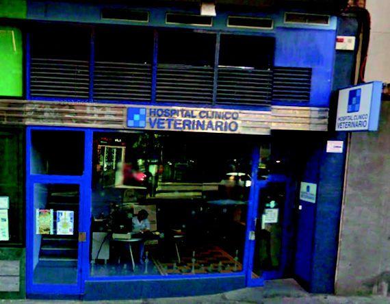 Hospital clínico veterinario en Talavera de la Reina