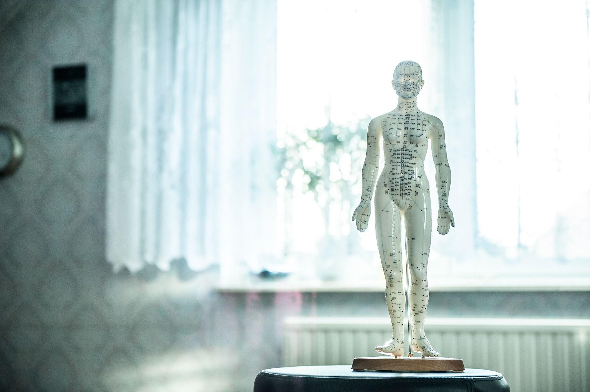 Centro osteopatía Santurtzi