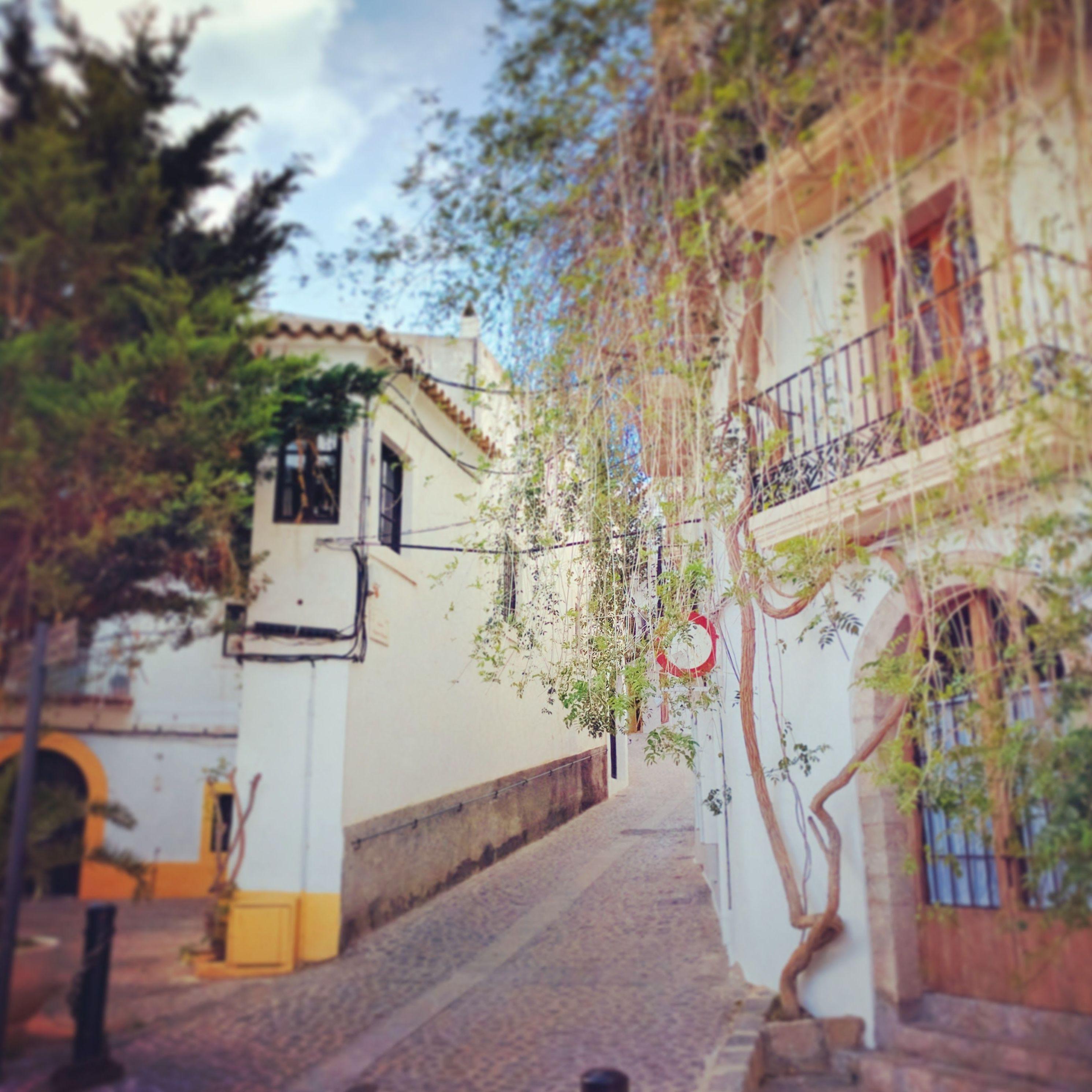 Foto 47 de Abogados en Eivissa | Raad Abogados. Tel 691 270 993