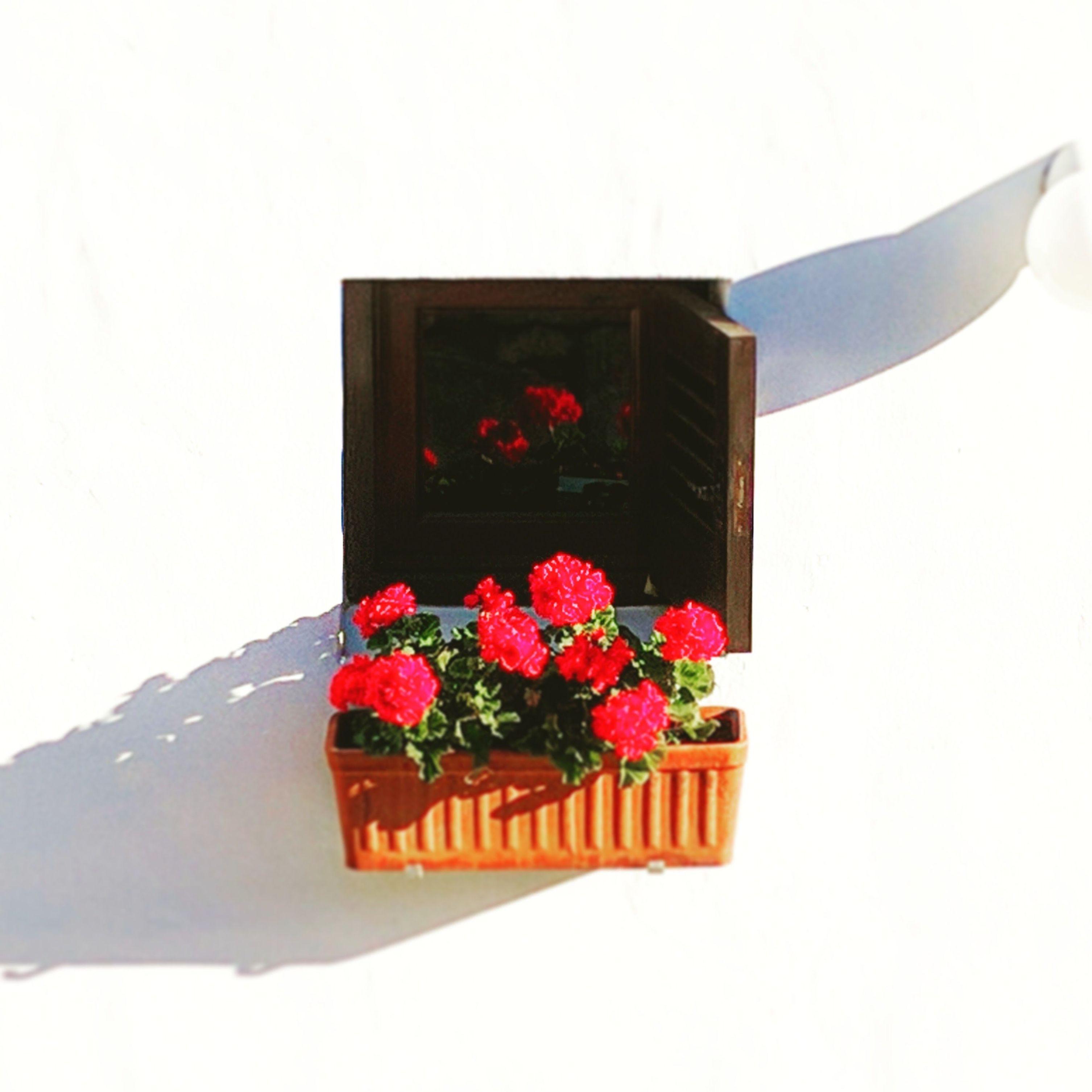Foto 54 de Abogados en Eivissa | Raad Abogados. Tel 691 270 993