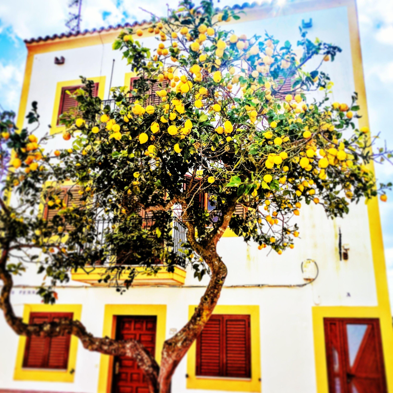 Foto 96 de Abogados en Eivissa | Raad Abogados. Tel 691 270 993