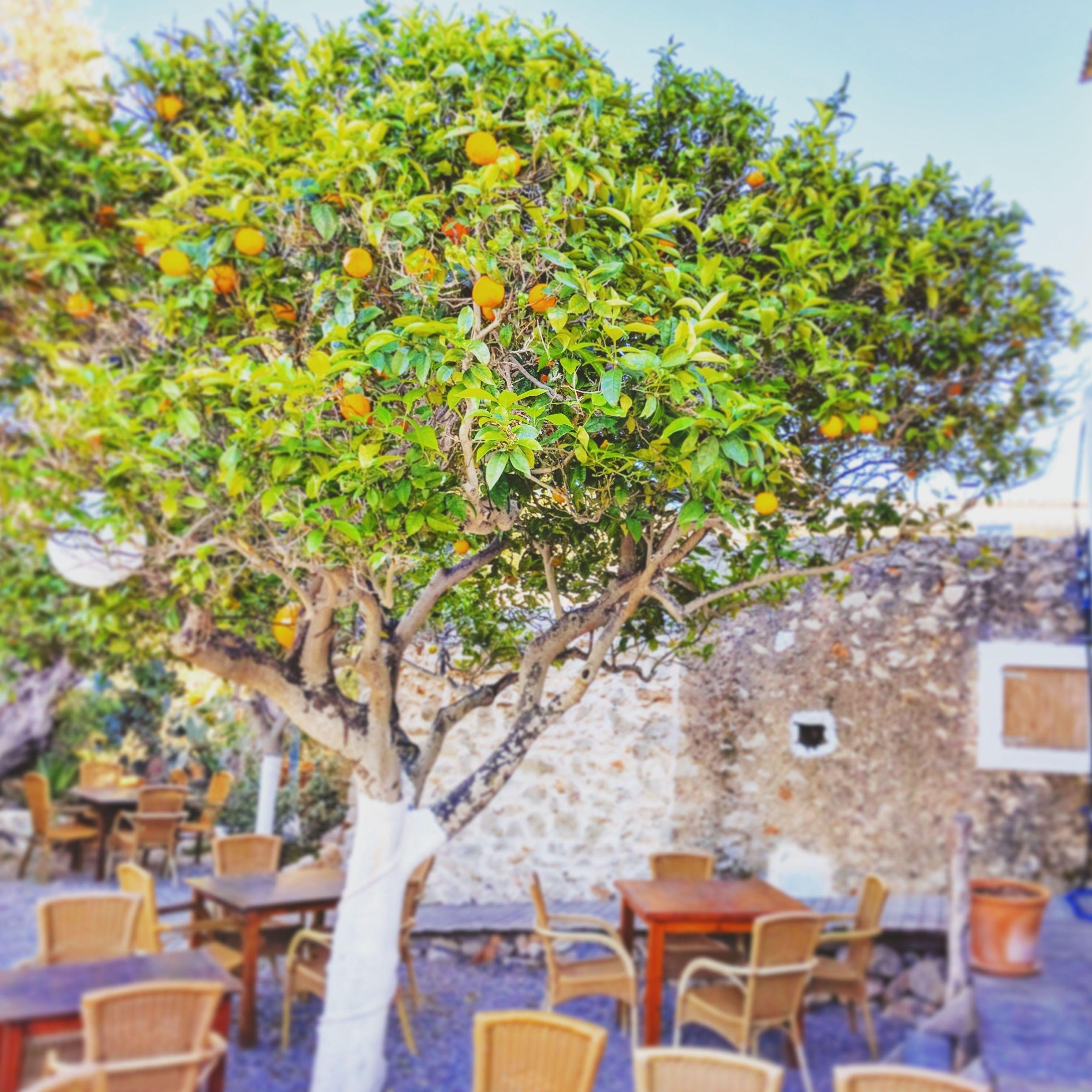 Foto 53 de Abogados en Eivissa | Raad Abogados. Tel 691 270 993