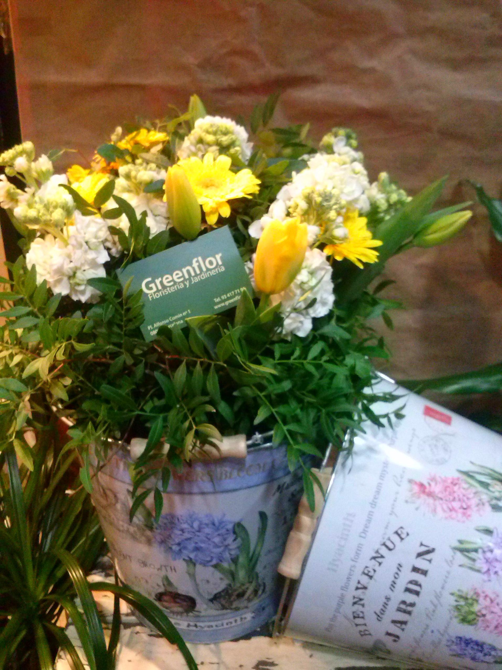 Cubos de lat n productos y servicios de greenflor for Productos jardineria barcelona