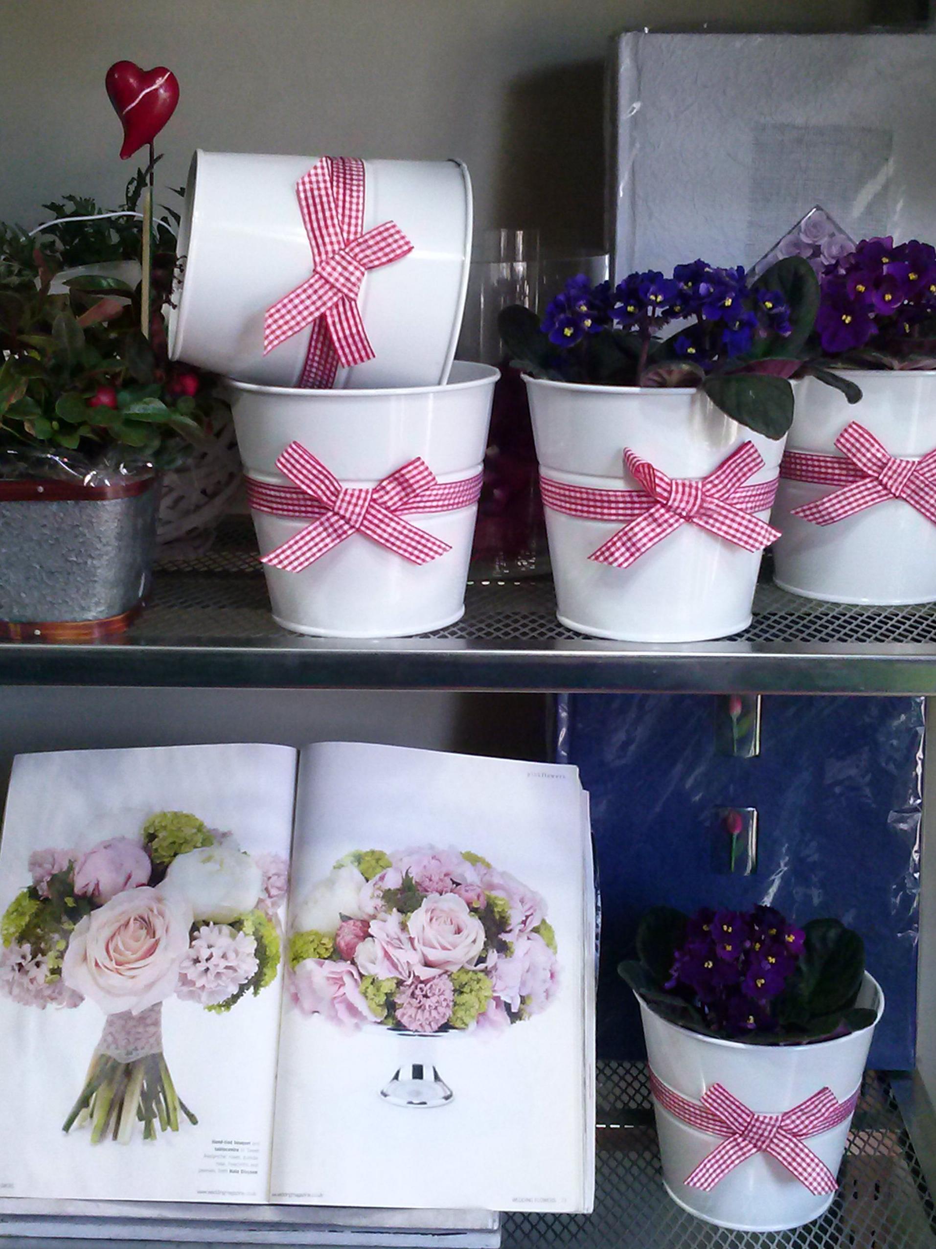 Tiestos productos y servicios de greenflor florister a for Jardineria a domicilio barcelona
