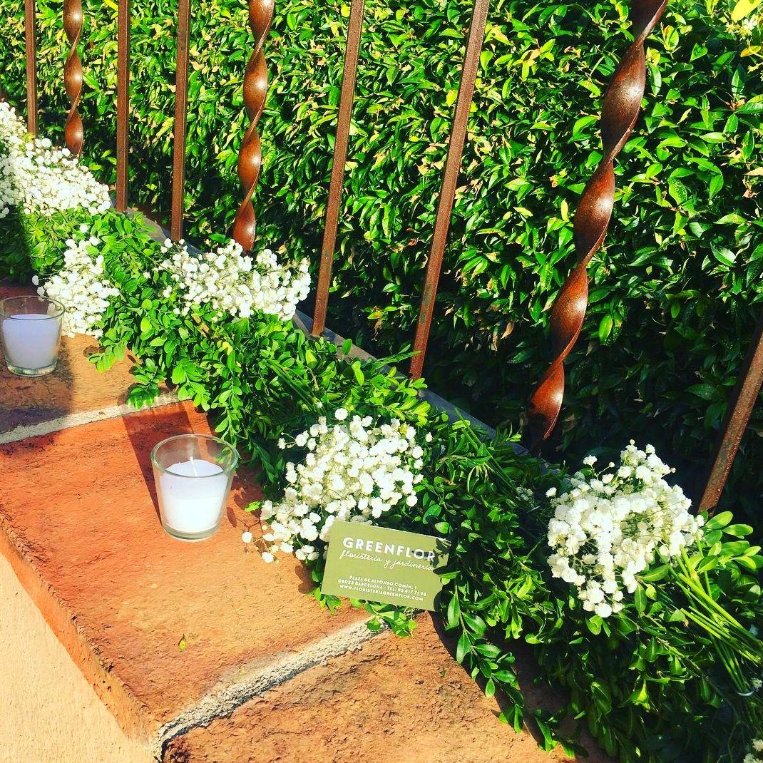 Guirnaldas de boj y olivo productos y servicios de for Productos jardineria barcelona