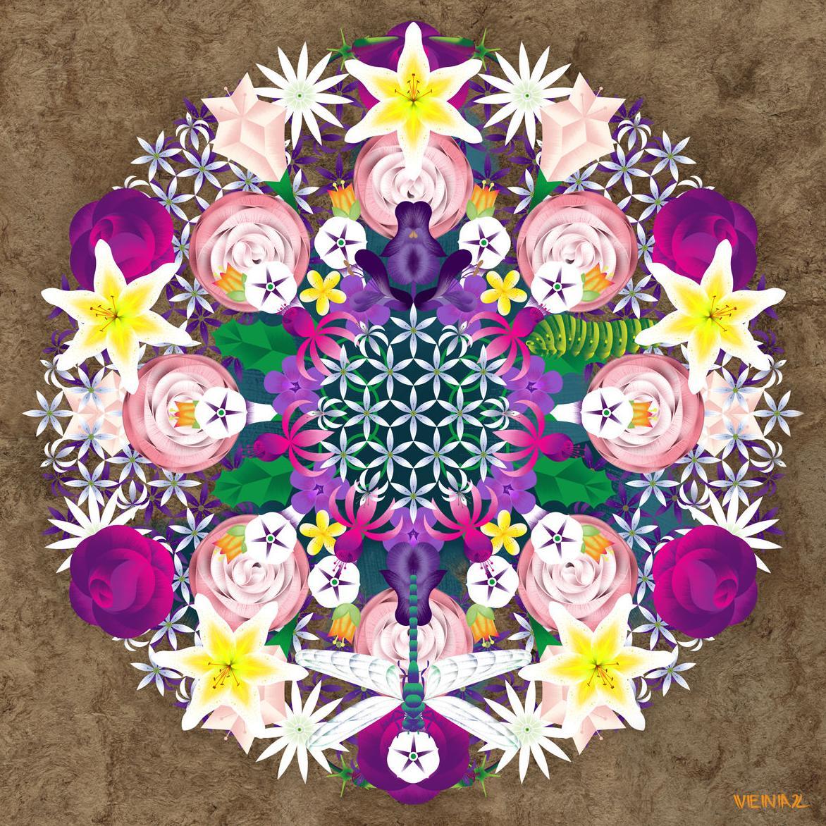 Terapia floral en Espazo Maxiavida: Ofrecemos: de Maxiavida Terapias Naturais