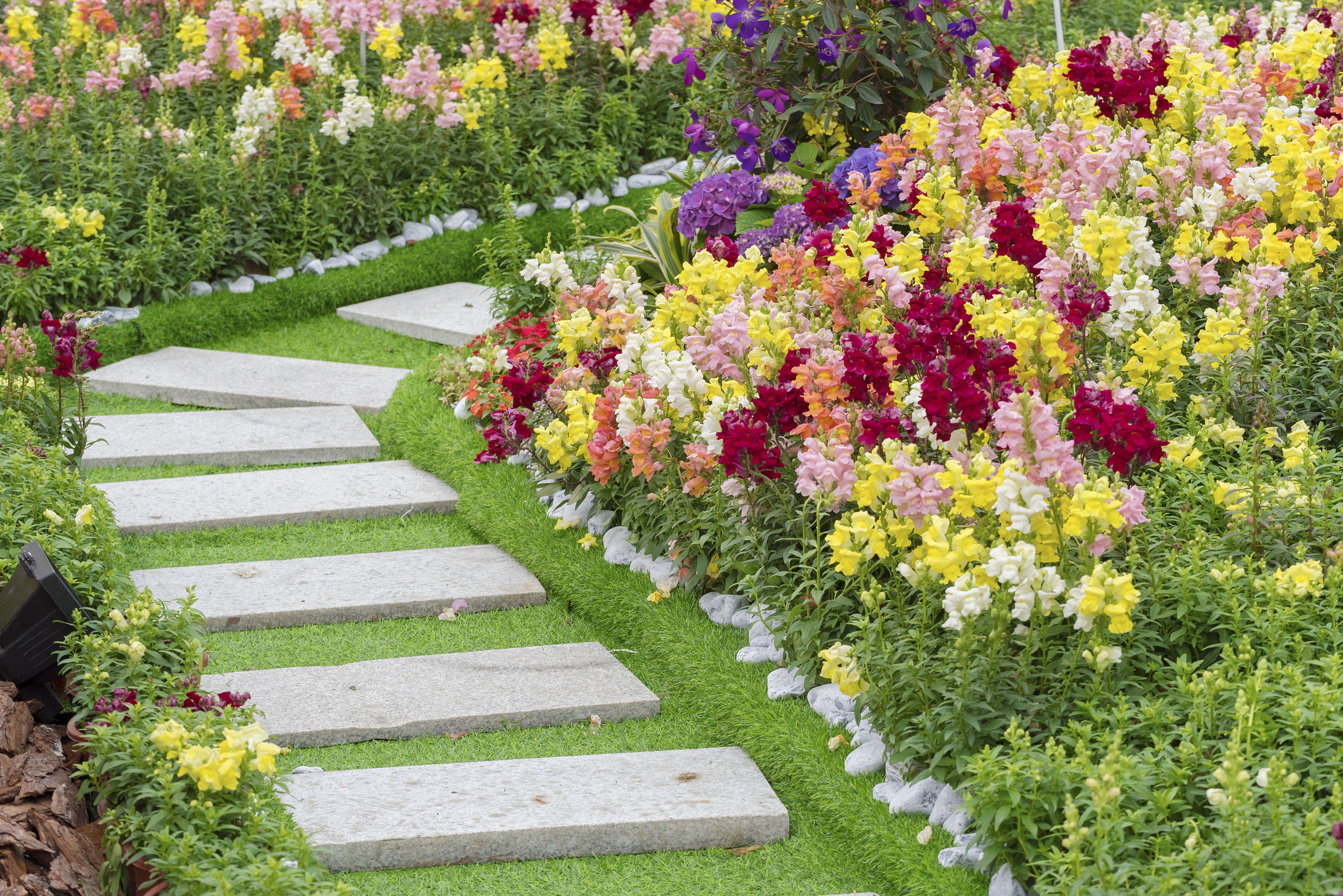 Diseño y mantenimiento de jardines: Nuestros servicios de AS Reformas Integrales