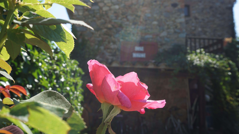 Foto 86 de Casa rural con encanto en La Cellera de Ter | Casa Rural Can Jepet