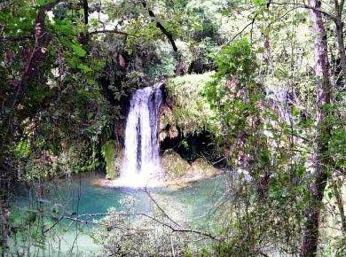 Cascada - Cogolls -