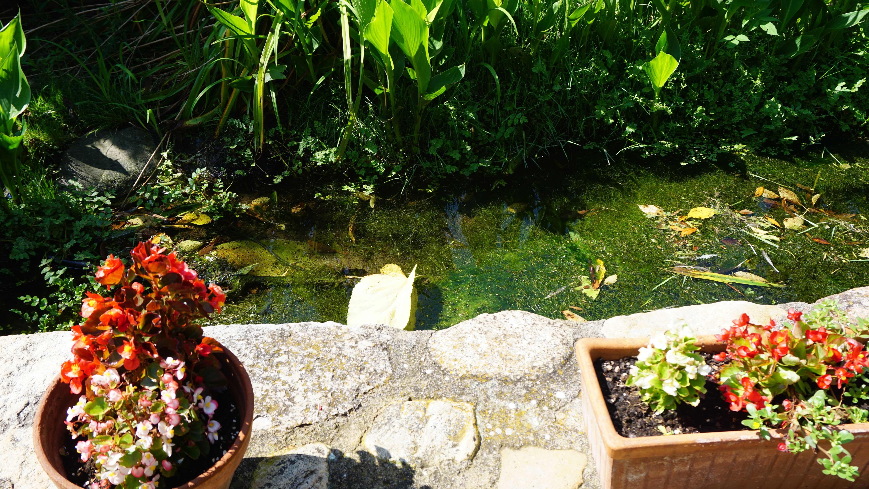Foto 80 de Casa rural con encanto en La Cellera de Ter | Casa Rural Can Jepet