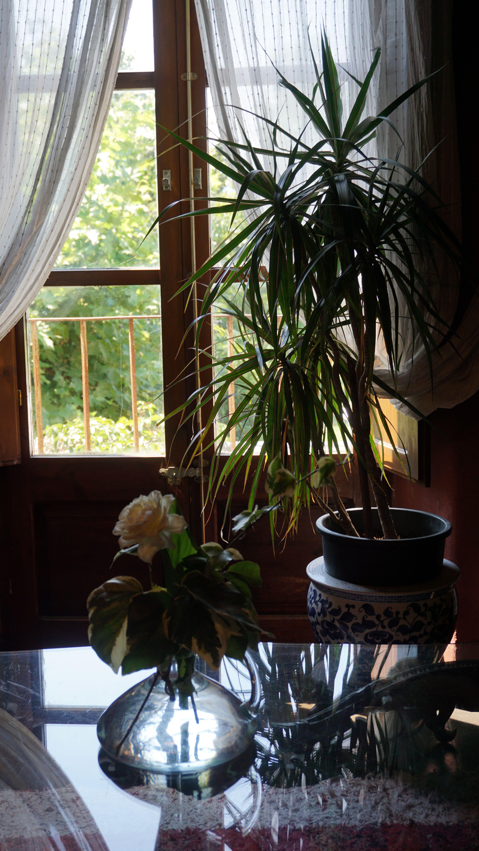 Foto 25 de Casa rural con encanto en La Cellera de Ter | Casa Rural Can Jepet