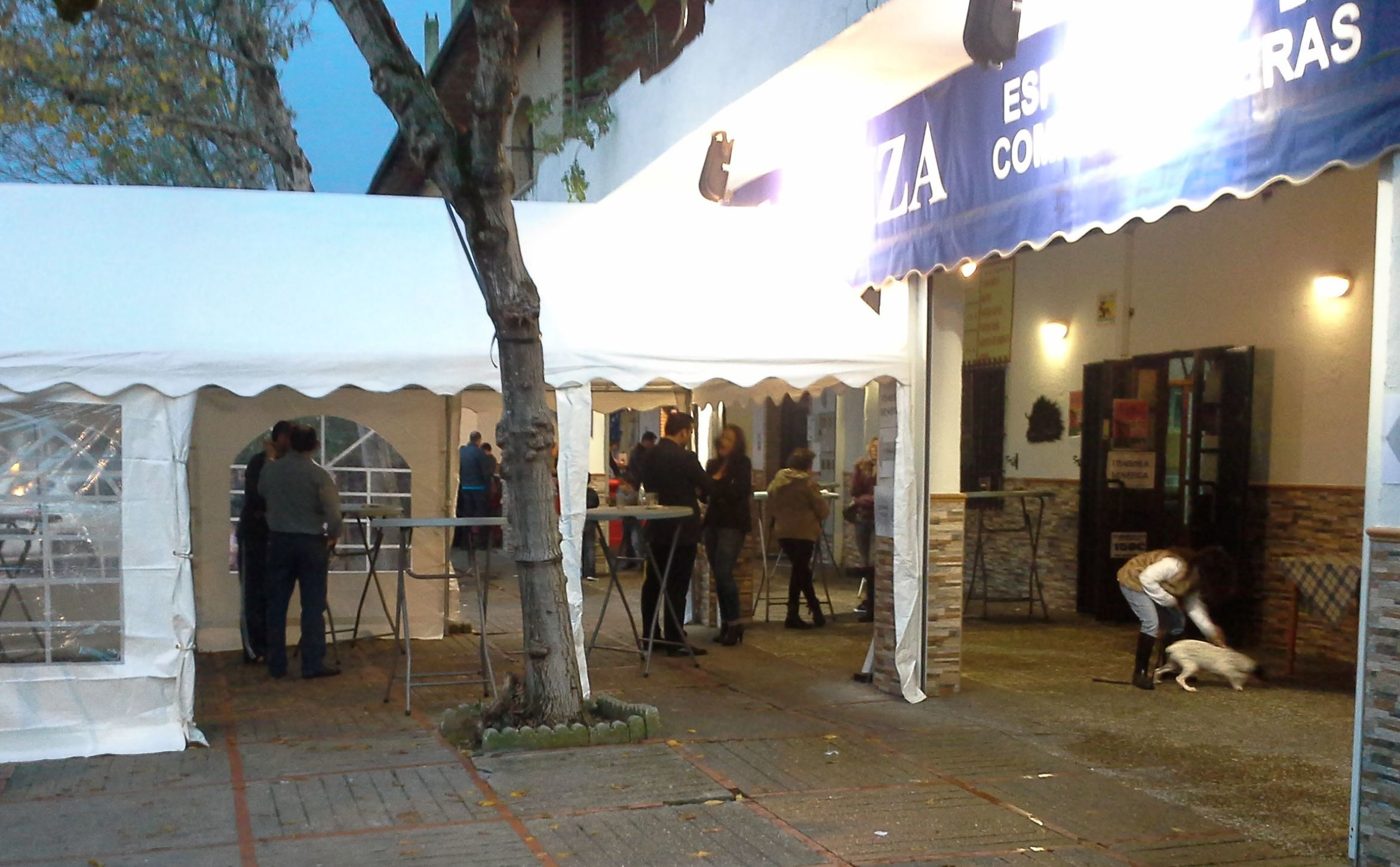 Zambombas Jerezanas 2015: Catálogo de Jedal Alquileres