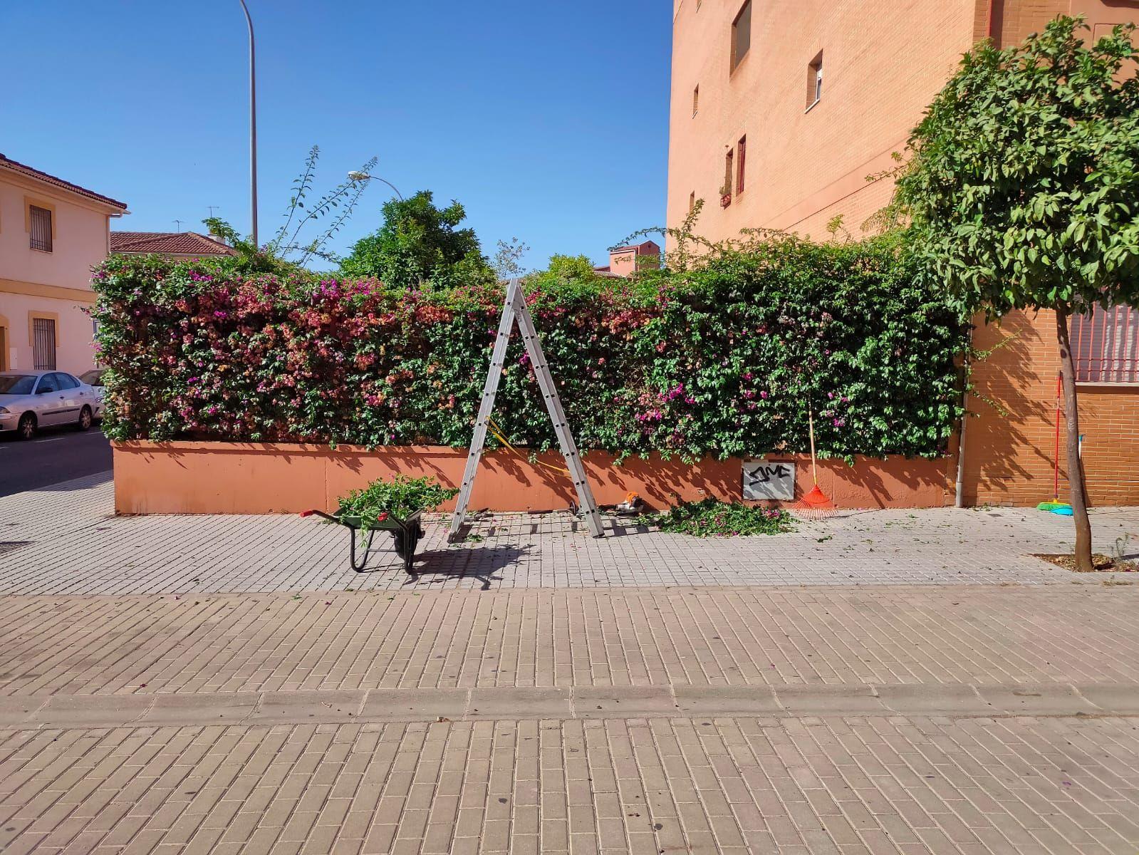 Foto 4 de Limpieza (empresas) en    CABYMAR MANTENIMIENTOS