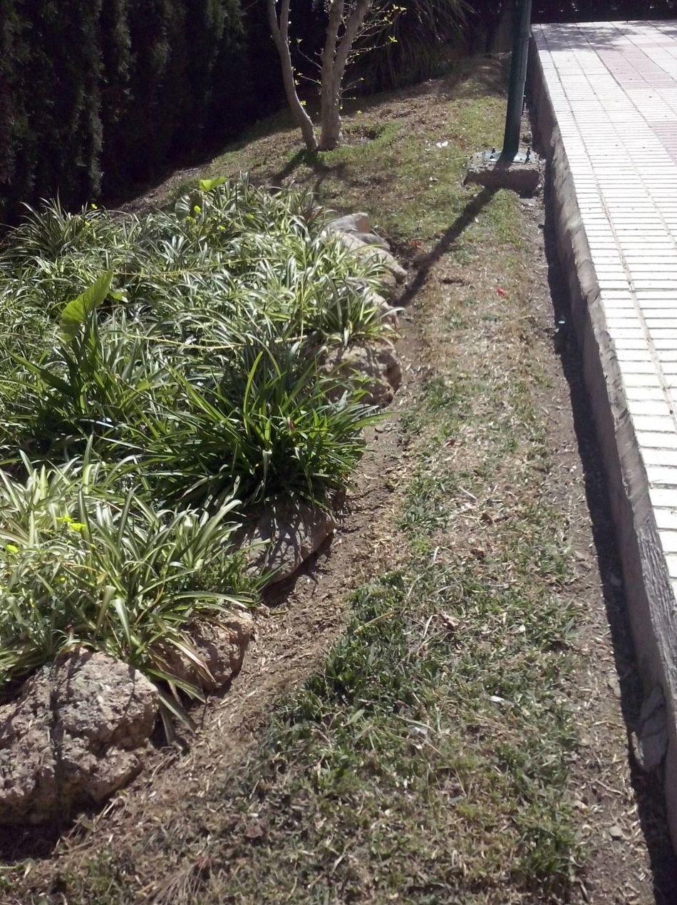 Mantenimiento de jardines en Córdoba