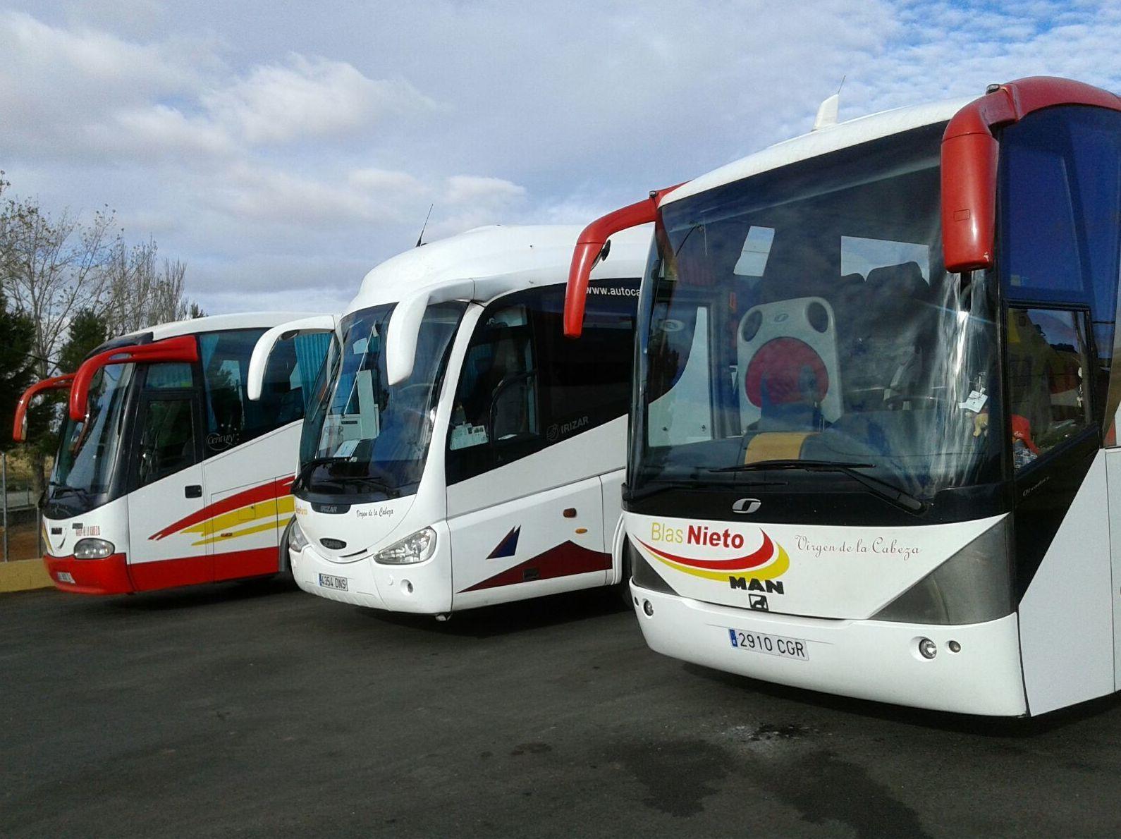 Empresa de autobuses: Servicio  de Autocares Nieto Pardo